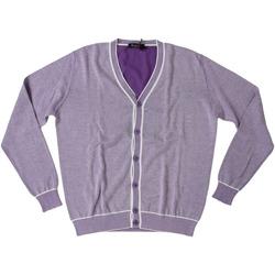 Abbigliamento Uomo Gilet / Cardigan Ferrante ATRMPN-28010 Viola