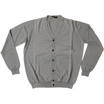Abbigliamento Uomo Gilet / Cardigan Ferrante ATRMPN-28014 Grigio