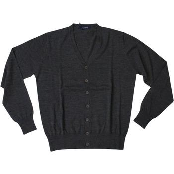 Abbigliamento Uomo Gilet / Cardigan Ferrante ATRMPN-28016 Grigio