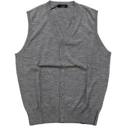 Abbigliamento Uomo Gilet / Cardigan Ferrante ATRMPN-28021 Grigio