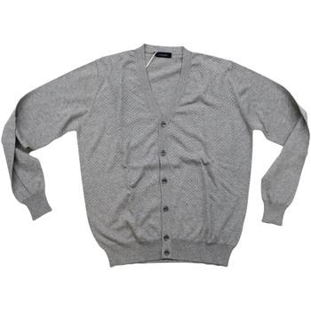 Abbigliamento Uomo Gilet / Cardigan Ferrante ATRMPN-28022 Grigio