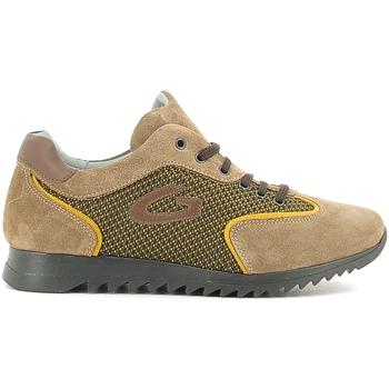 Scarpe Unisex bambino Sneakers basse Alberto Guardiani GK22343G Beige