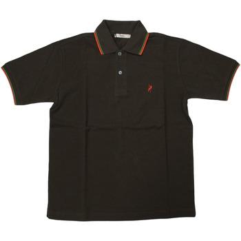 Abbigliamento Uomo Polo maniche corte Ingram ATRMPN-28112 Marrone