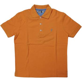 Abbigliamento Uomo Polo maniche corte Ingram ATRMPN-28115 Arancio