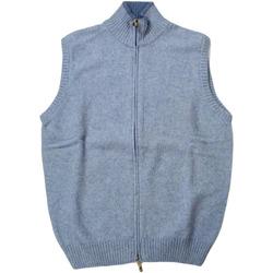 Abbigliamento Uomo Gilet / Cardigan Ingram ATRMPN-28194 Blu