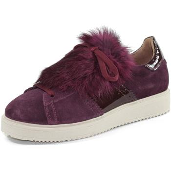 Scarpe Bambina Sneakers basse Andrea Morelli IB54856A BORDEAUX