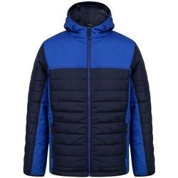 Abbigliamento Uomo Piumini Finden & Hales LV660 Blu