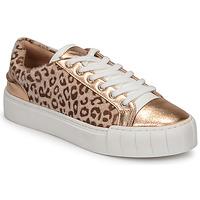 Scarpe Donna Sneakers basse Vanessa Wu LEVANTER Leopard