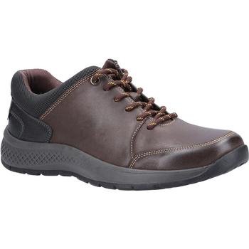 Scarpe Uomo Sneakers basse Cotswold  Marrone