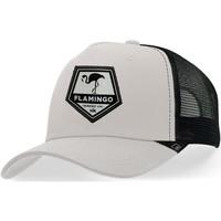 Accessori Cappellini Hanukeii Flamingo Grigio