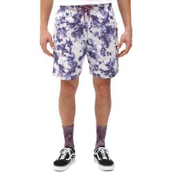 Abbigliamento Uomo Shorts / Bermuda Dickies DK0A4XAZB651 Bianco
