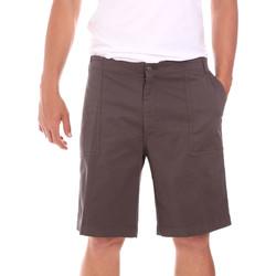 Abbigliamento Uomo Shorts / Bermuda Colmar 0867T 8SP Marrone