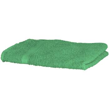 Casa Asciugamano e guanto esfoliante Towel City RW1576 Verde acceso
