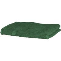 Casa Asciugamano e guanto esfoliante Towel City RW1576 Verde foresta