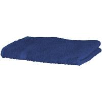 Casa Asciugamano e guanto esfoliante Towel City RW1576 Blu reale
