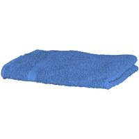 Casa Asciugamano e guanto esfoliante Towel City RW1577 Blu acceso