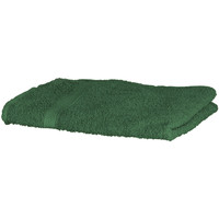 Casa Asciugamano e guanto esfoliante Towel City RW1577 Verde foresta