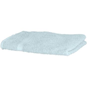 Casa Asciugamano e guanto esfoliante Towel City RW1577 Menta