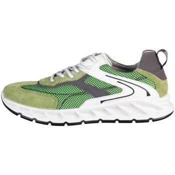 Scarpe Uomo Sneakers basse IgI&CO Santos Grigio, Verde