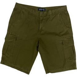 Abbigliamento Uomo Shorts / Bermuda Woolrich ATRMPN-28761 Verde