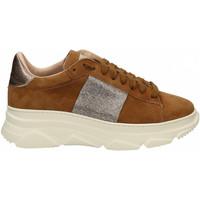 Scarpe Uomo Sneakers basse Stokton 815 CIPRO Altri