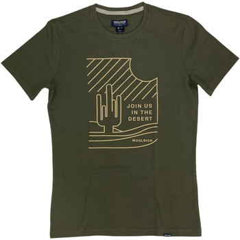 Abbigliamento Uomo T-shirt maniche corte Woolrich ATRMPN-29084 Verde