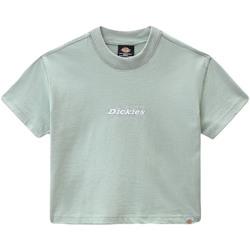 Abbigliamento Donna T-shirt maniche corte Dickies DK0A4XBAB871 Verde