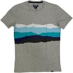 Abbigliamento Uomo T-shirt maniche corte Woolrich ATRMPN-29097 Grigio
