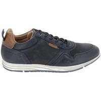 Scarpe Sneakers basse Bullboxer Sneaker 53ANACO Bleu Blu