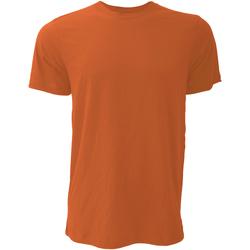 Abbigliamento Uomo T-shirt maniche corte Bella + Canvas CA3001 Autunno
