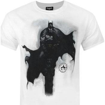 Abbigliamento Uomo T-shirt maniche corte Dessins Animés  Bianco