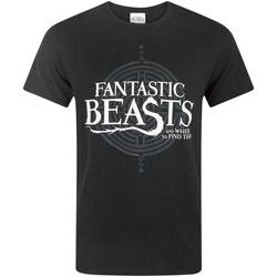 Abbigliamento Uomo T-shirt maniche corte Fantastic Beasts And Where To Fi  Nero