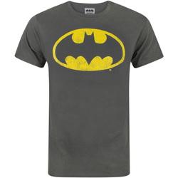 Abbigliamento Uomo T-shirt maniche corte Dessins Animés  Carbone