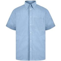 Abbigliamento Uomo Camicie maniche corte Absolute Apparel  Azzurro