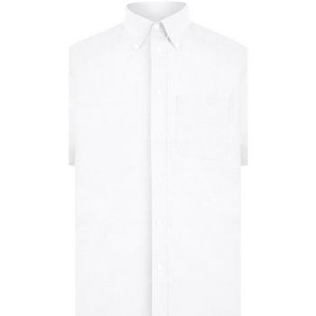 Abbigliamento Uomo Camicie maniche corte Absolute Apparel  Bianco