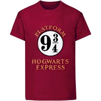 Abbigliamento Donna T-shirt maniche corte Harry Potter  Viola