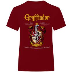 Abbigliamento T-shirt & Polo Harry Potter  Mattone