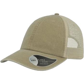 Accessori Cappellini Atlantis  Polvere