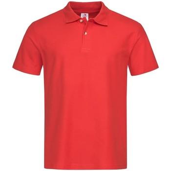 Abbigliamento Uomo Polo maniche corte Stedman  Rosso Scarlet
