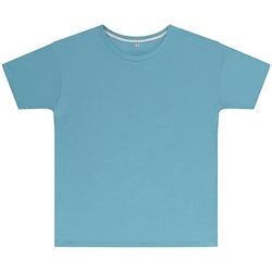 Abbigliamento Unisex bambino T-shirt maniche corte Sg SGTEEK Azzurro cielo