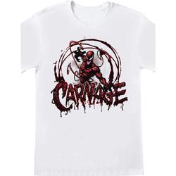 Abbigliamento T-shirt maniche corte Spiderman  Bianco