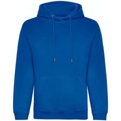 Abbigliamento Uomo Felpe Awdis JH201 Blu reale
