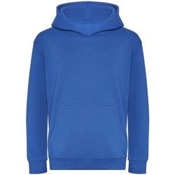 Abbigliamento Unisex bambino Felpe Awdis J201J Blu reale