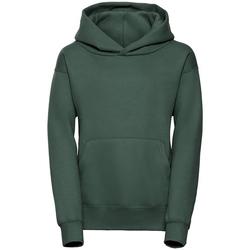 Abbigliamento Uomo Felpe Jerzees Schoolgear R265B Verde bottiglia