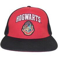 Accessori Cappellini Harry Potter  Nero