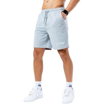 Abbigliamento Uomo Shorts / Bermuda Hype  Grigio