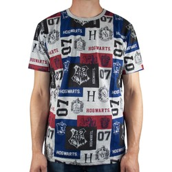 Abbigliamento Uomo T-shirt maniche corte Harry Potter  Multicolore