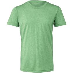 Abbigliamento Unisex bambino T-shirt & Polo Bella + Canvas CA3413Y Verde Triblend