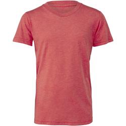 Abbigliamento Unisex bambino T-shirt & Polo Bella + Canvas CA3413Y Rosso chiaro Triblend