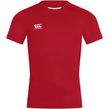 Abbigliamento Uomo T-shirt maniche corte Canterbury CN260 Rosso